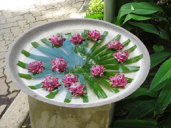 ฮิลตัน ภูเก็ต อาร์คาเดีย รีสอร์ท แอนด์ สปา: lotus flowers which are located throughout the resort