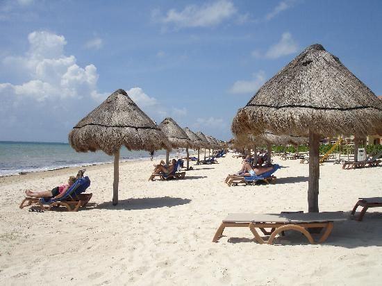 Ocean Coral & Turquesa: plage de l'hotel