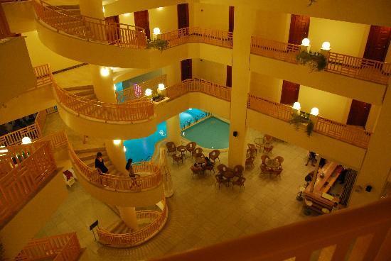 Golden Lotus Hotel: Pool