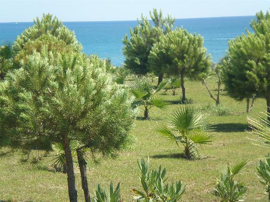 Alba Resort Hotel: the grounds