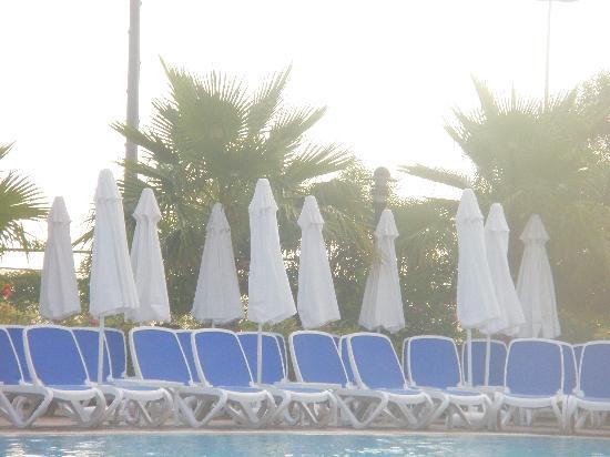 Alba Resort Hotel: Loungers