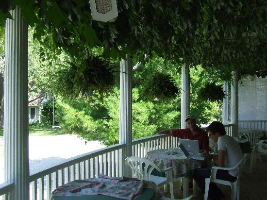 Martha's Vineyard Bed & Breakfast: The veranda