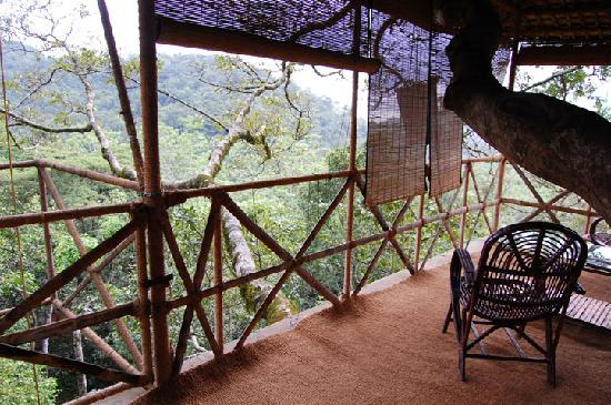 Vythiri Resort: Tree House Balcony