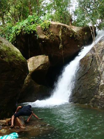 Vythiri Resort: Waterfall near resort (200m away)