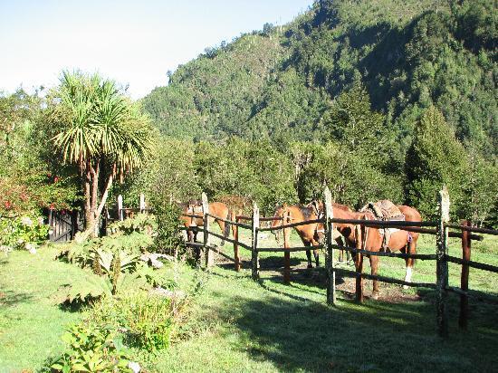 Campo Aventura Cochamó: Perfect Start