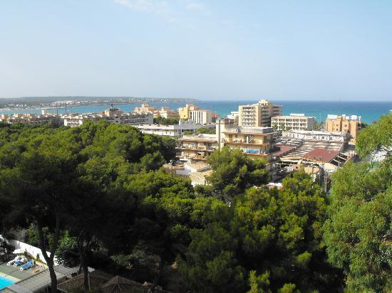 Hotel Riu Playa Park: Vista desde la habitacion