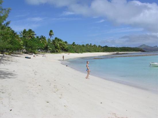 Oarsman's Bay Lodge: snorkelling alongside sandy beach, low tide