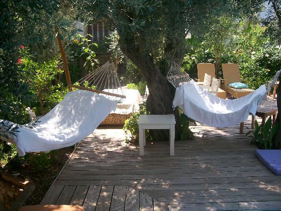 Oyster Residences: hammock heaven