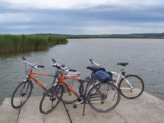 Velence, ฮังการี: at the lake