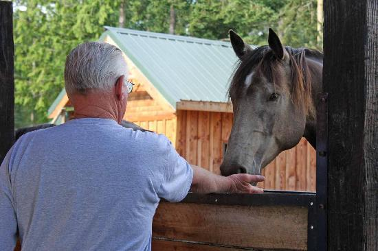 Bond Ranch Retreat: Introducing the Horses to Peppermints