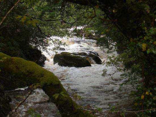 เคนแมร์, ไอร์แลนด์: River rapids near Kilgarvan