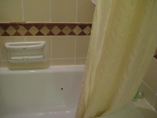 โรงแรมเดอะรอแยล บินตัง: Bathtub with a hole