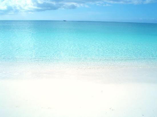 Grace Bay Club: il mare così com'è...