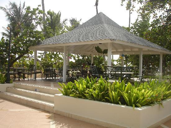 Grand Bahia Principe El Portillo: Buffet area_ terrace