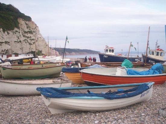 Fishing Boats on the Beach at Beer