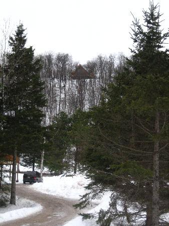 Blueberry Lake Resort: Chalet from below