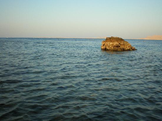 Coral Beach Resort Montazah: mare