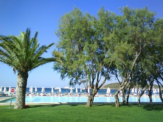 Plaza Resort Hotel: Piscine à débordement sur plage