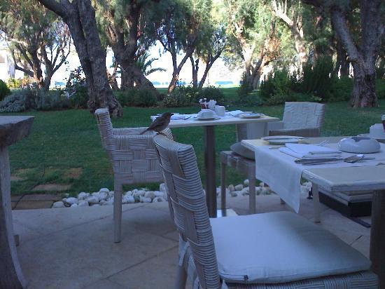 Plaza Resort Hotel: terrasse petit déjeuner