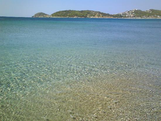 Plaza Resort Hotel : eau bord de plage