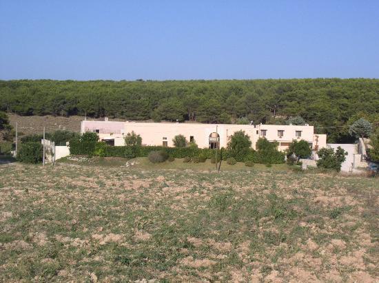 Hotel Masseria Bandino: in avvicinamento alla masseria