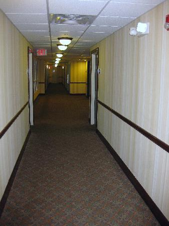 Country Inn & Suites by Radisson, Cool Springs, TN: hallway
