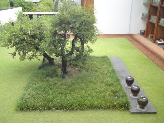 อนันตรา เชียงใหม่ รีสอร์ท แอนด์ สปา: lawn