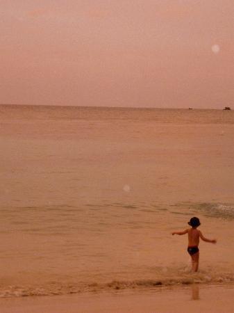 Eden Vanilla: Coucher de soleil a Petit Havre