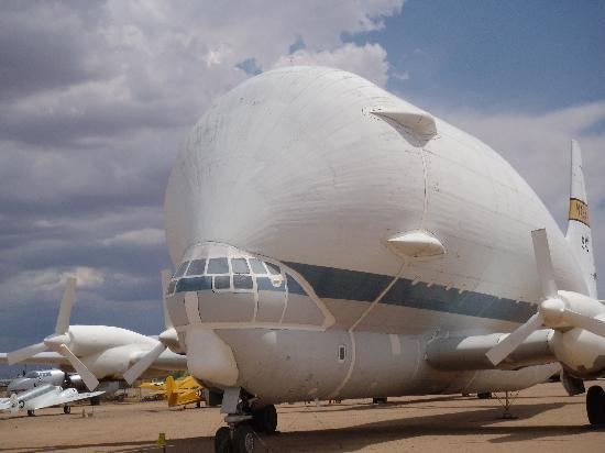 "Pima Air and Space Museum: ""Whale Looking"" Plane"