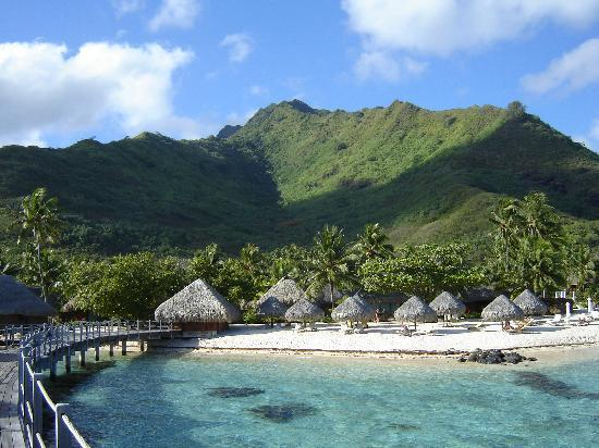 Hilton Moorea Lagoon Resort & Spa: looking back at the beach
