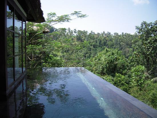 อุบุด แฮงกิ้งการ์เดนส์ บาย โอเรียนท์เอ็กซ์เพรส: la piscine de la chambre