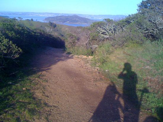 Stoked SF: view of the bay from the trail