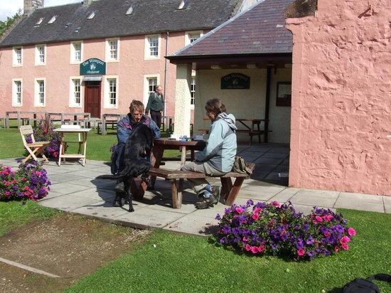 Isle of Arran, UK: Morning Coffee