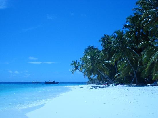 Fihalhohi Island Resort: spiaggia di Fihalhohi