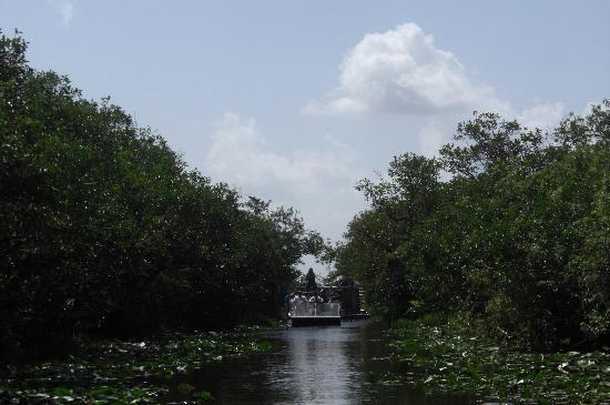 Miami Tour Company: On the Airboat