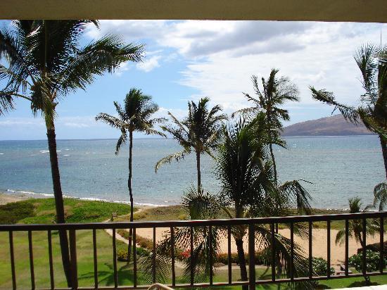 Koa Lagoon: View from 502