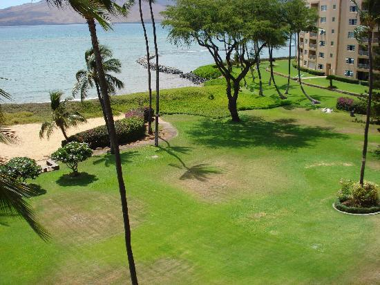 Koa Lagoon: Looking down to the right from 502