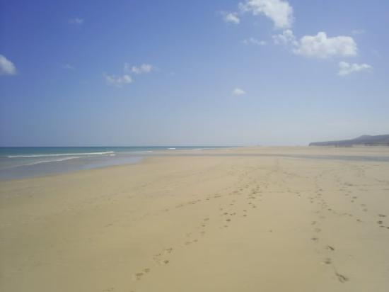 Melia Fuerteventura: Playa