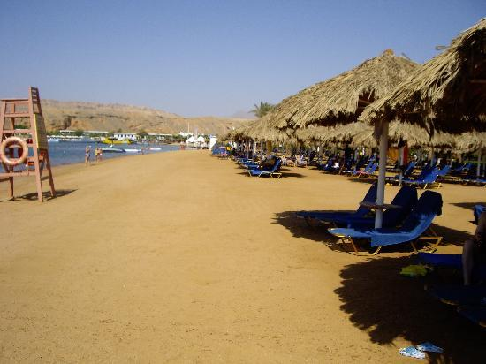 Iberotel Palace: The hotel beach