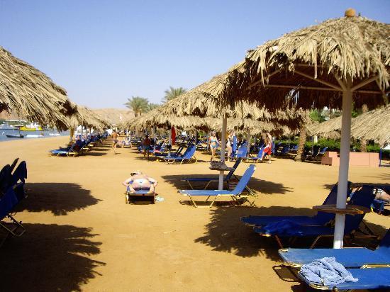 Iberotel Palace: the beach again