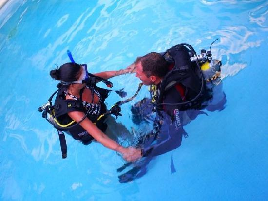 Reef Quest Divers: Pool Training Before the Dive