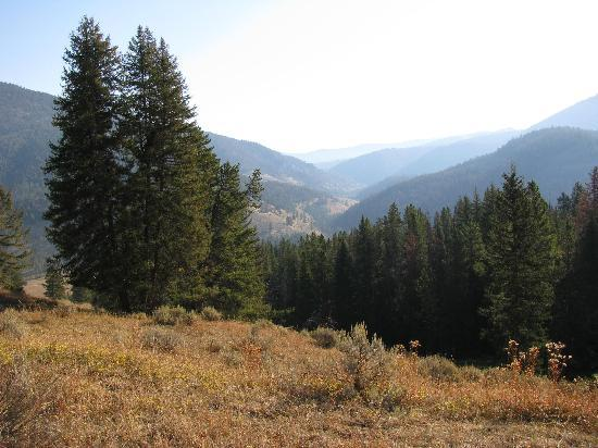 320 Guest Ranch: Scenery toward Yellowstone Park