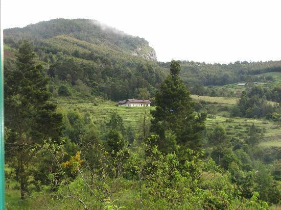 Bedroom View-Camp Noel