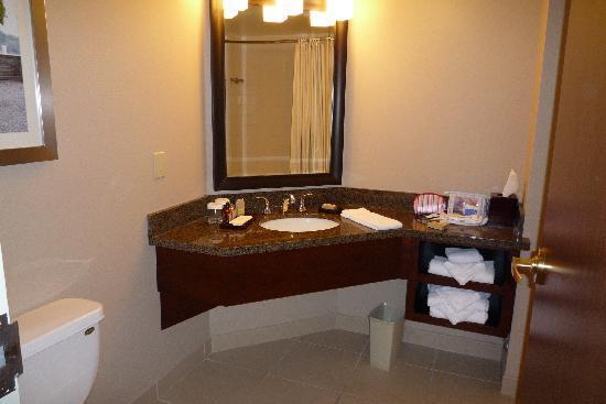 แมร์ริออทท์ ไนแองการ่าฟอลส์วิว โฮเต็ล & สปา: Bathroom