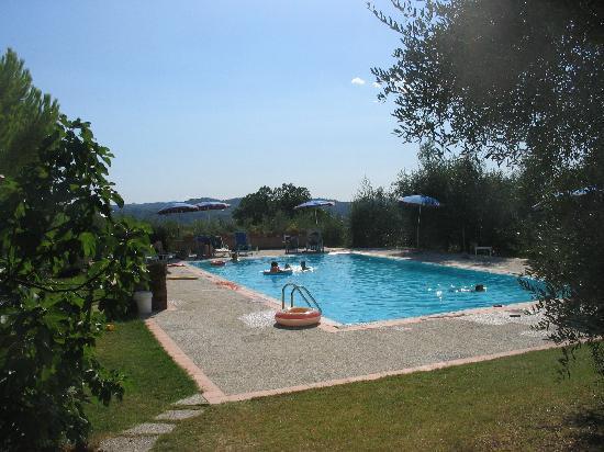 Agriturismo Aglioni: Der Pool