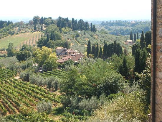 Valdirose: Maravillosa Toscana verde
