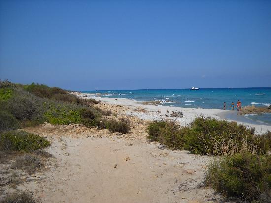 Hotel Sortale: spiaggia di sa curcurica