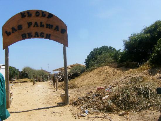 Hotel Dar El Olf: Arrivée sur la plage