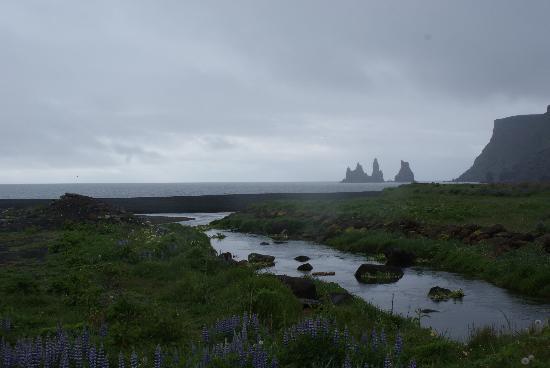 เรคยาวิก, ไอซ์แลนด์: a foggy south shore