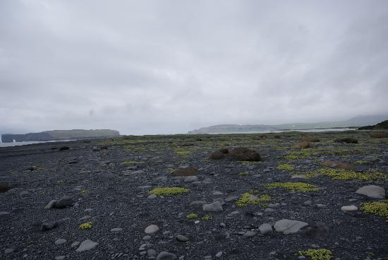 เรคยาวิก, ไอซ์แลนด์: south shore tour